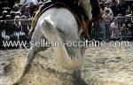 Sellerie Occitane, reconstitutions toutes époques
