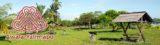 Histoire et patrimoine d'Awala-Yalimapo (Guyane)