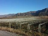 Histoire de Vitrolles (Hautes-Alpes)