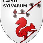 Histoire et patrimoine de Captieux (Gironde)