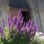 Histoire et patrimoine de Sardent (Creuse)