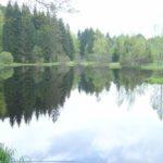 Histoire et patrimoine de Gerbépal (Vosges)