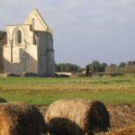 Histoire et patrimoine de La Flotte (Charente-Maritime)