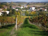 Histoire et patrimoine de Singleyrac (Dordogne)