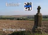 Histoire et patrimoine de Bousbach (Moselle)
