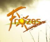 Histoire et patrimoine de Frozes (Vienne)