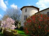 Histoire et patrimoine de Mortemart (Haute-Vienne)