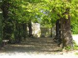 Histoire et patrimoine de Saint Vincent des Prés (Sarthe)