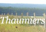 Histoire et patrimoine de Thaumiers (Cher)