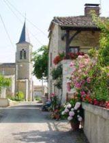 Histoire et patrimoine de Saint Martin de Goyne (Gers)