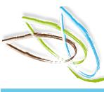 Histoire et patrimoine du Verger (Ille et Vilaine) site officiel