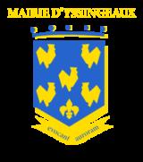 Histoire et patrimoine d'Yssingeaux (Haute-Loire)