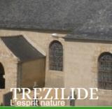 Histoire et patrimoine de Trézilidé (Finistère)