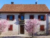 Histoire et patrimoine de Massongy (Haute-Savoie)