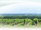 Histoire et patrimoine de Champlitte (Haute-Saône)