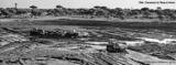 Histoire et patrimoine de La Grande Motte (Héraut)