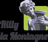 Histoire et patrimoine de Rilly la Montagne (Marne)
