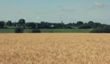 Histoire et patrimoine de Teillé (Loire-Atlantique)