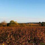 Histoire et patrimoine de Canaules et Argentières (Gard)